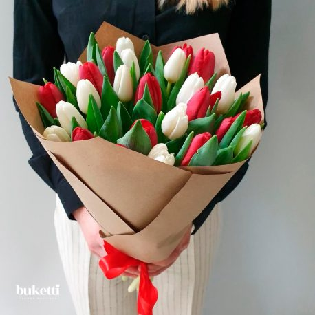 25 красных и белых тюльпанов
