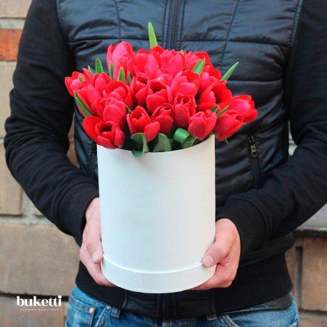 25 красных тюльпана в коробке