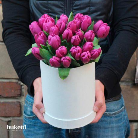 25 фиолетовых тюльпана в коробке