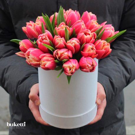 25 пионовидных тюльпана в коробке