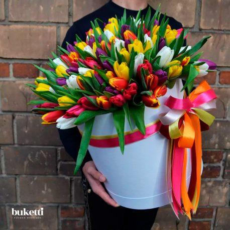 101 разноцветный тюльпан в коробке violetta1